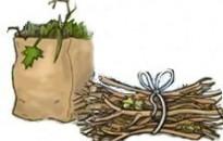 Zöldhulladék gyűjtési akció!