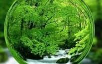 Tájékoztató a környezet állapotáról