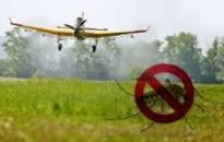 Lakossági Tájékoztatás földi szúnyoggyérítésről